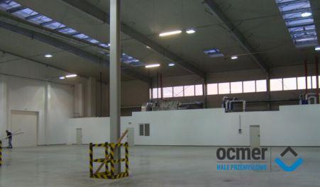 Production hall - lubuskie - POLI-ECO