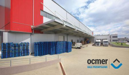 warehouse, zachodnio-pomorskie, Novoterm