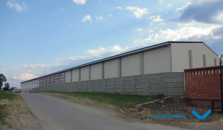 Warehouse - Poland - Team