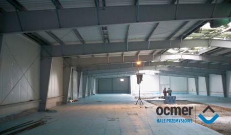 Production hall - kujawsko-pomorskie - MIRES