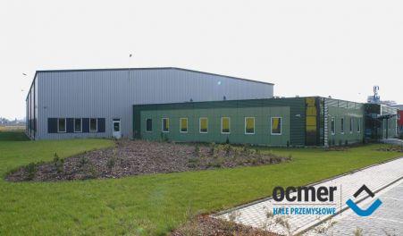 Production hall and warehouse - łódzkie - Aflofarm